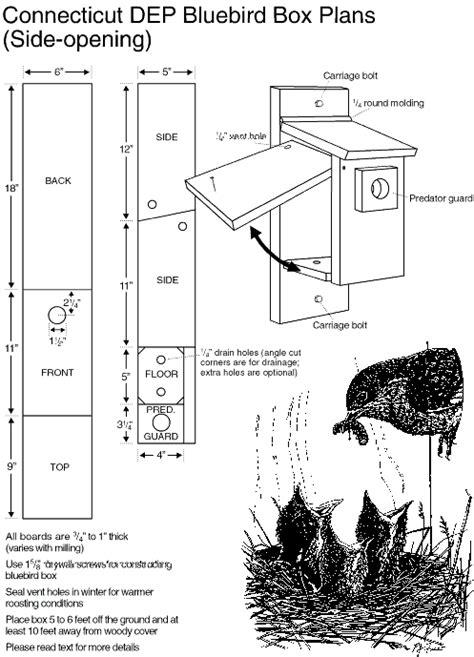 mountain bluebird house plans bluebird fact sheet