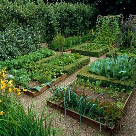 kitchen vegetable garden best 20 potager garden ideas on raised bed