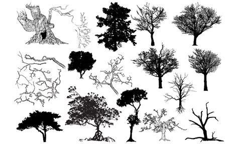 tree shapes adobe illustrator vector graphics