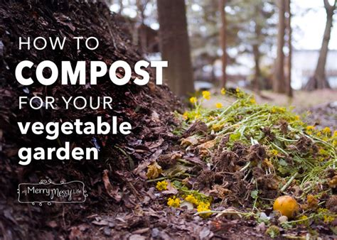 best organic compost for vegetable garden use a simple compost test to avoid contaminated materials