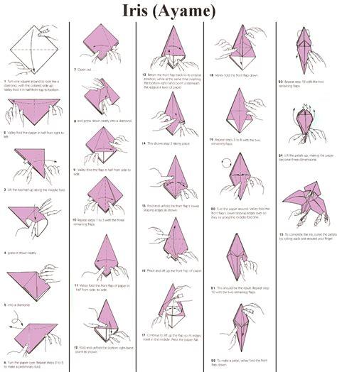 iris origami papercraft sallycousins pearltrees