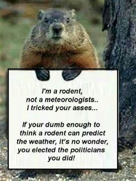 groundhog day quotes i am a rodent not a meteorologist groundhog day