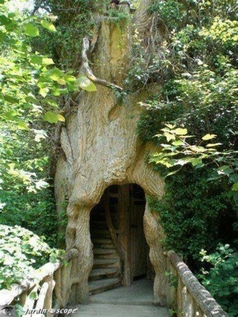 o tree in coolest tree house cool houses and house stuff