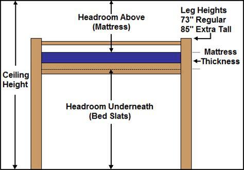 height of bunk bed collegebedlofts loft bed bunk beds height