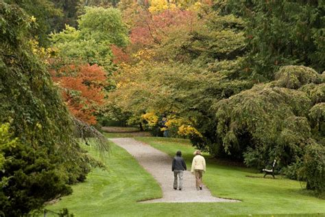washington botanic garden washington park arboretum of washington