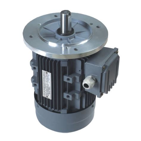 Electric Motor Italy by China Ms Italy Electric Motor 0 18kw 7 5kw Photos
