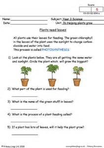 How Does Answer Garden Work Primaryleap Co Uk Plants Need Leaves Worksheet