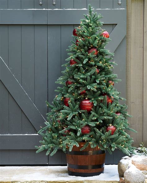 tree outdoor oakville narrow outdoor tree balsam hill