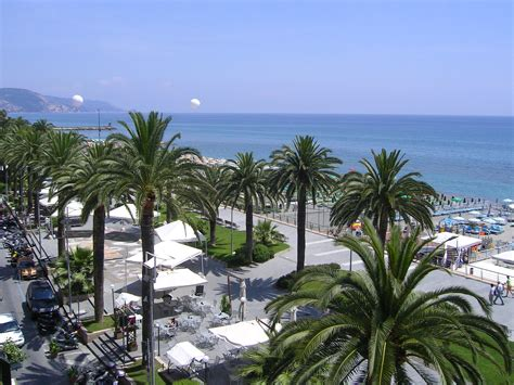 trees in italy palm trees on the in loano italy wallpapers and