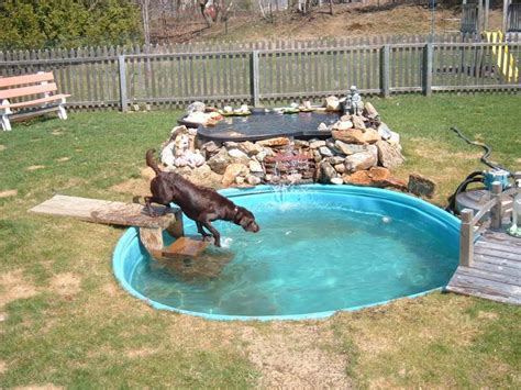 how to make a pool in your backyard 8 friendly backyard ideas healthy paws