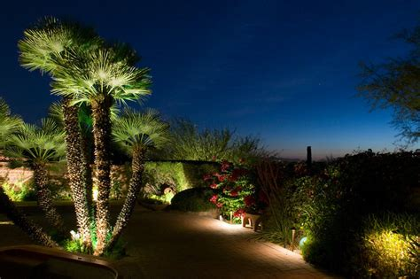 landscape lighting for trees palm tree lighting outdoor lighting perspectives