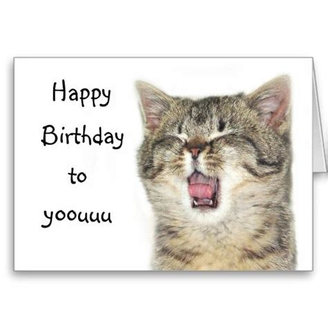 how to make a cat card 17 best images about cat birthday cards on