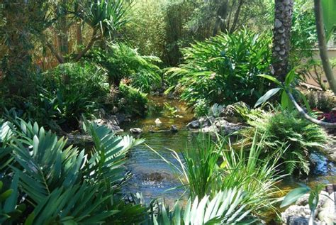 ta botanical gardens florida botanical gardens ta florida botanical gardens a