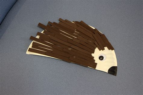 hedgehog paper plate craft hedgehog paper plate care for the family