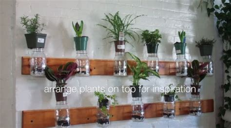 jar herb garden wall diy model summer oakes shows you how to make