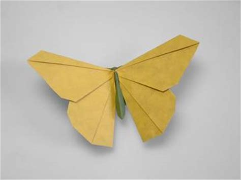advanced origami origamido quot advanced origami quot gallery 02 origamido butterfly