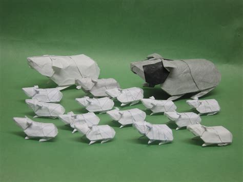 origami guinea pig paper origami guinea pigs guinea pig x wallpaper www