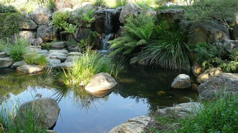 australian national botanic gardens canberra a scenic drive from sydney to canberra apollo motorhome