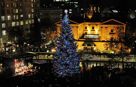 pioneer square tree a pnw make the most of your winter visit to
