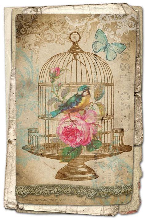 free decoupage prints free printable vintage bird card from avalon