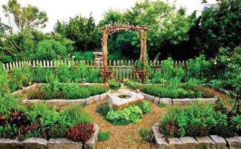 kitchen vegetable garden kitchen garden creation