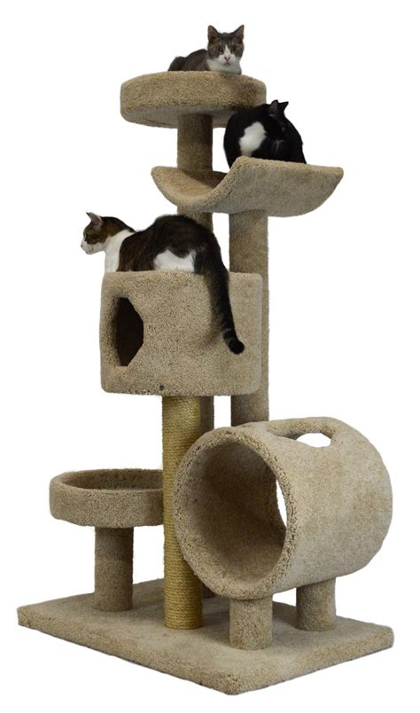 top 5 purrfect cat trees for large cats purrfect cat breeds