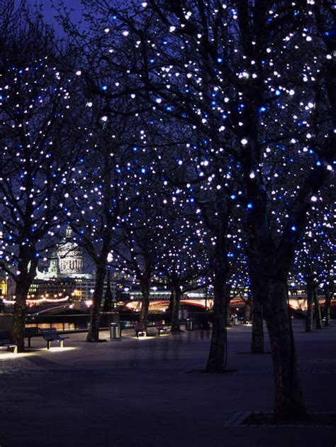 outdoor tree lights 25 best ideas about outdoor tree lighting on