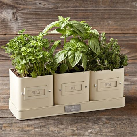 herb pot herb pot with tray transitional indoor pots and