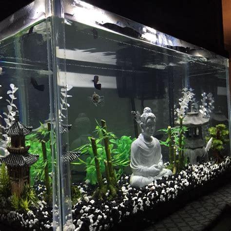 aquarium decoration ideas freshwater best 25 aquarium ideas ideas on aquarium