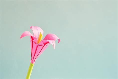 beautiful origami flower beautiful origami flowers floranext florist websites