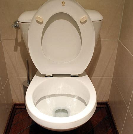 toilet after a