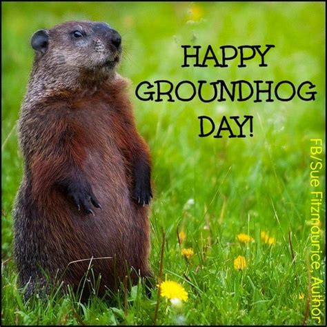 groundhog day expression