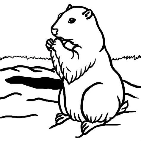 groundhog day for a black s 233 lection de coloriage marmotte 224 imprimer sur laguerche