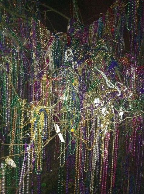 mardi gras bead tree bead tree on st charles mardi gras nola style