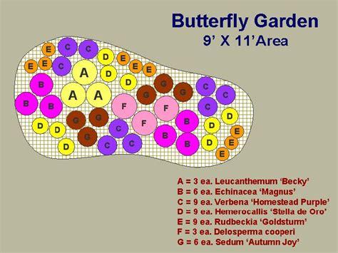 butterfly garden layout butterfly garden plan garden