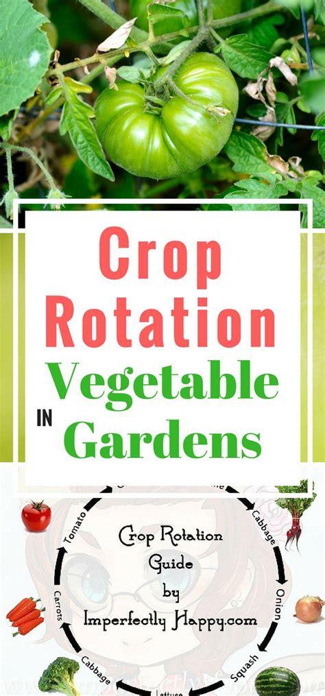 crop rotation home vegetable garden best 25 crop rotation ideas on