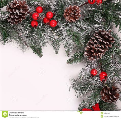 tree with pine cones trees with pine cones and berries on it 28 images 5