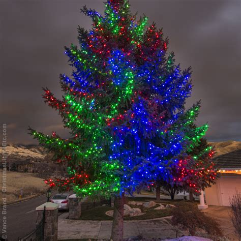 how to wrap lights around a tree best 28 lights tree wrap 2 x 8 green led net