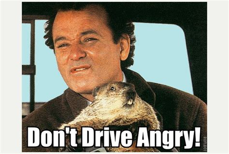 groundhog day imdb quotes phil groundhog day quotes quotesgram