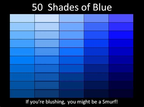shaeds of 50 shades of blue picture wit