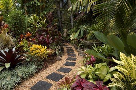 tropical landscaping ideas backyard tropical landscaping ideas australia eanavevai
