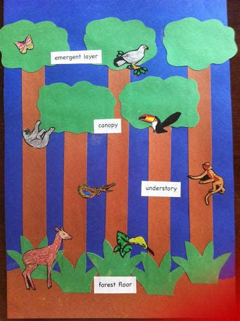 rainforest craft ideas for 7 best images about rainforest on trees