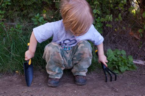 tips for planting a vegetable garden tips for planting a vegetable garden richly