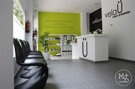 paint colors for veterinary clinic 100 paint colors for veterinary clinic building