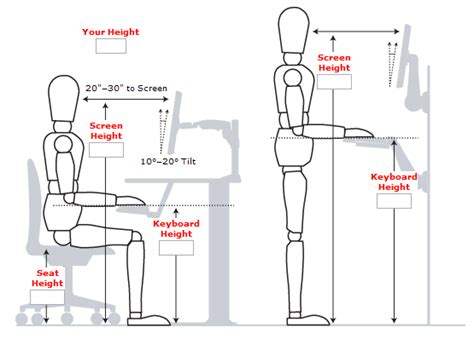 computer desk ergonomics measurements standing desk guide measurements exles and benefits