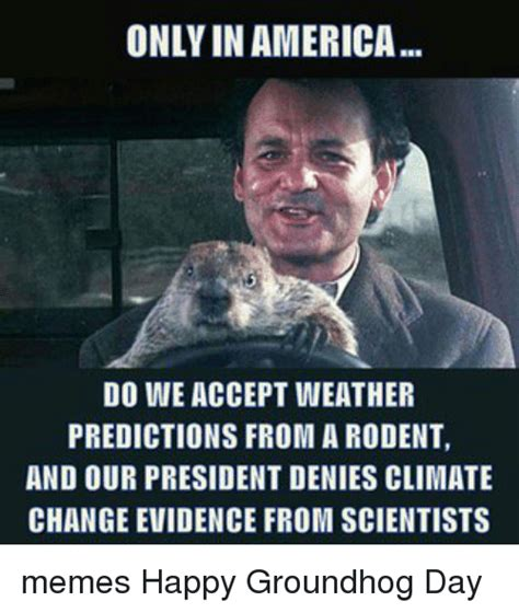 groundhog day america only in america do we accept weather predictions from a