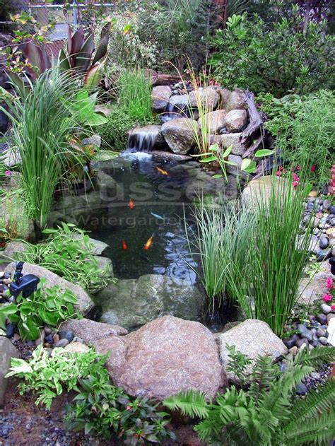backyard pond ideas with waterfall 25 trending small ponds ideas on small fish