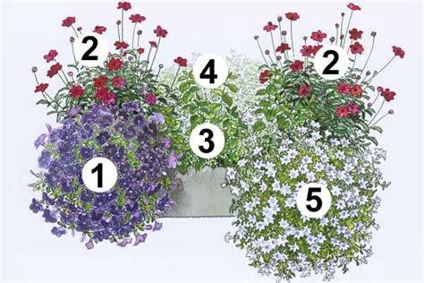 Blumenkübel Bepflanzen Vorschläge by Trendige Blumenk 228 Sten Zum Nachpflanzen Garten