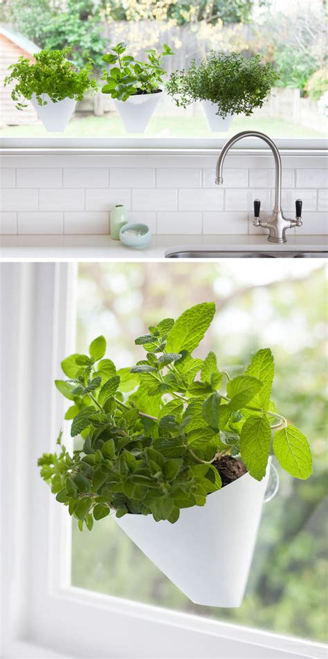 hanging wall garden indoor garden idea hang your plants from the ceiling