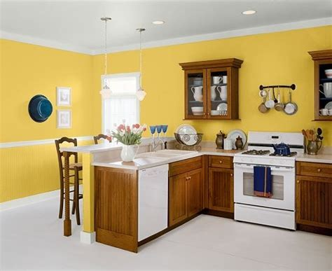 behr paint colors bright yellow 17 best images about painting on dr oz